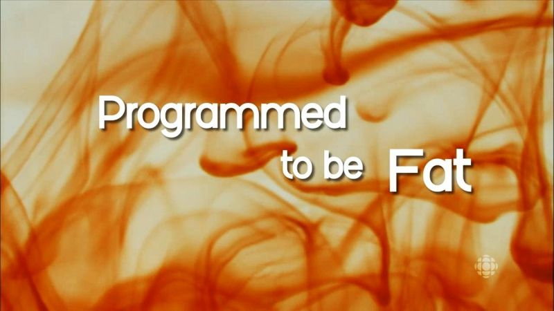 Image: Programmed-to-be-Fat-HDTV-Cover.jpg