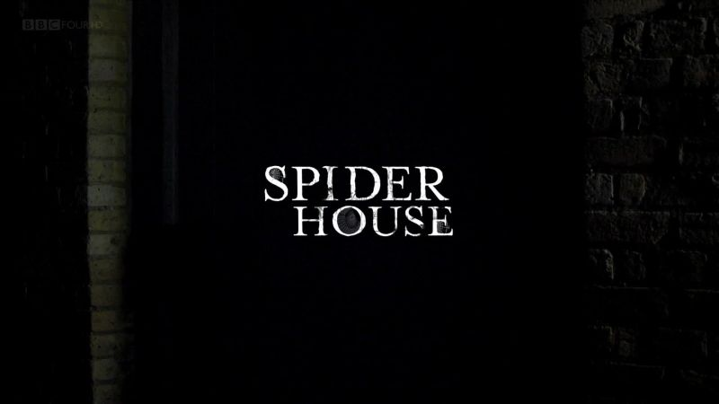 Image: Spider-House-BBC-Cover.jpg