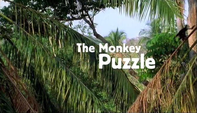 Image: Capuchins-the-Monkey-Puzzle-Cover.jpg
