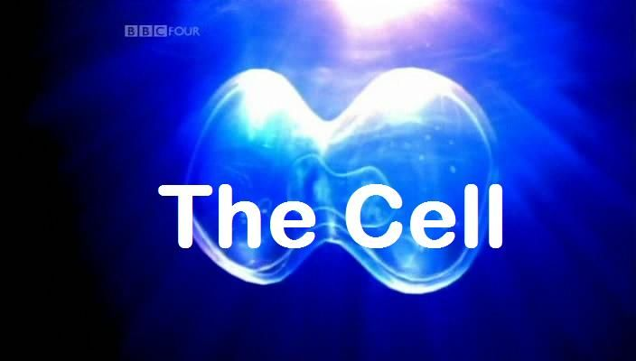 Image: The-Cell-Cover.jpg