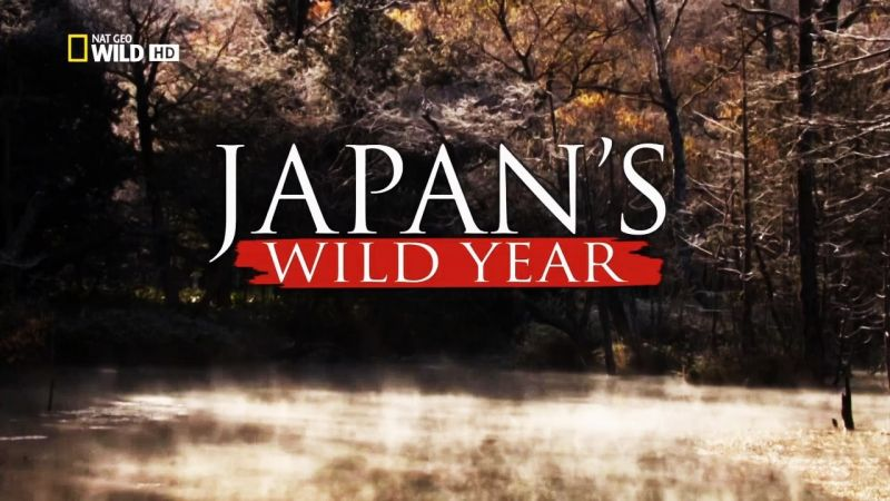 Image: Japans-Wild-Year-Cover.jpg