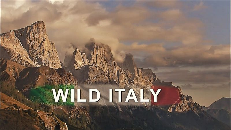 Image: Wild-Italy-Series-1-Cover.jpg