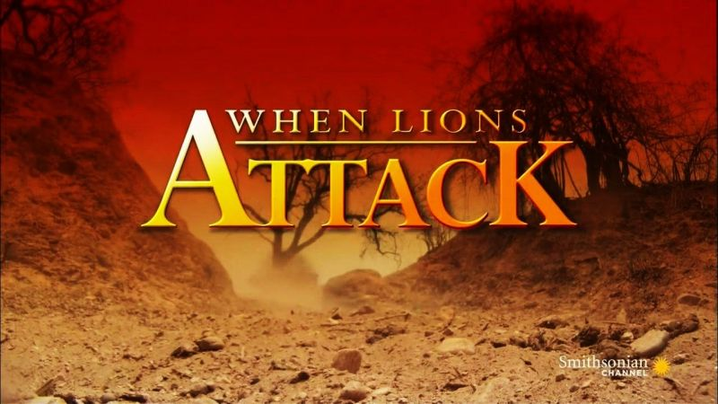 Image: When-Lions-Attack-Cover.jpg