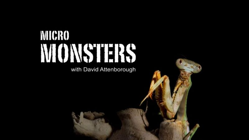 Image: Micro-Monsters-Cover.jpg