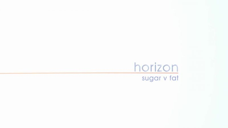 Image: Sugar-v-Fat-Cover.jpg