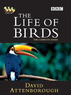Image:Life_of_Birds_Cover.jpg