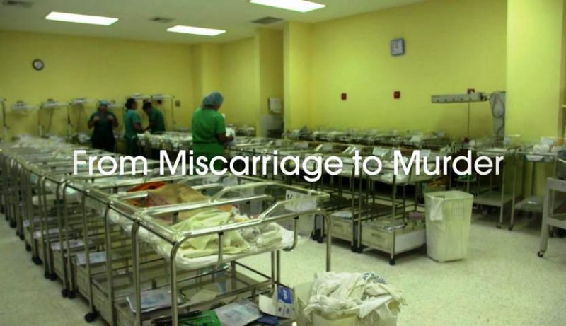 Image: Miscarriage-to-Murder-Cover.jpg