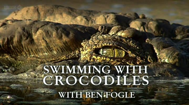 Image: Swimming-with-Crocodiles-Cover.jpg