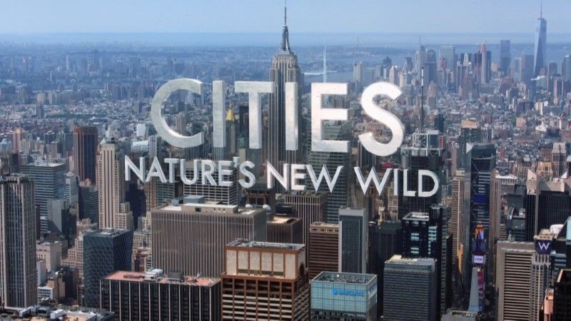 Image: Cities-Nature-s-New-Wild-Cover.jpg