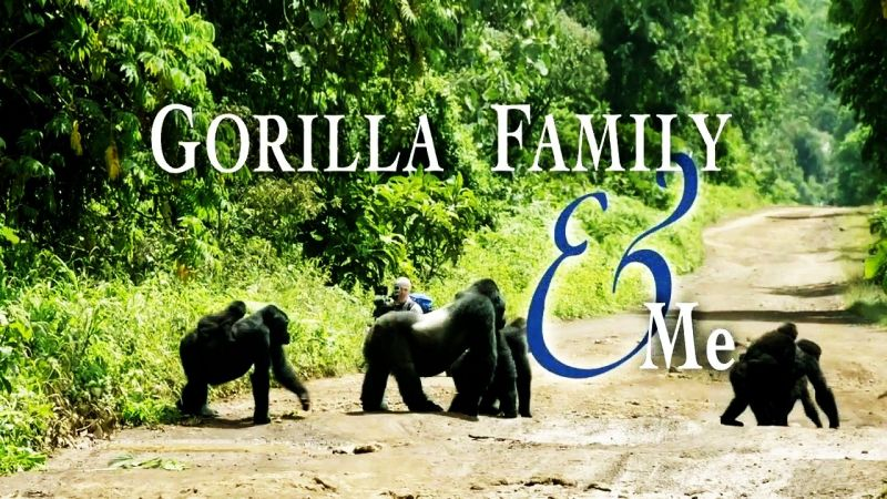 Image: Gorilla-Family-and-Me-Cover.jpg