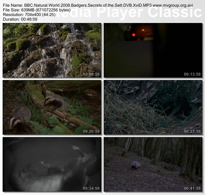 Image: Badgers-Secrets-of-the-Sett-Screen0.jpg