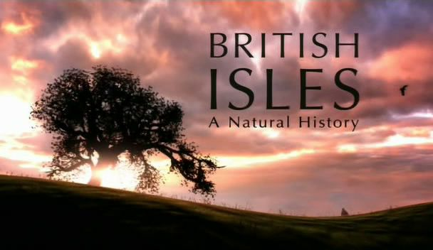 Image: British-Isles-A-Natural-History-Cover.jpg