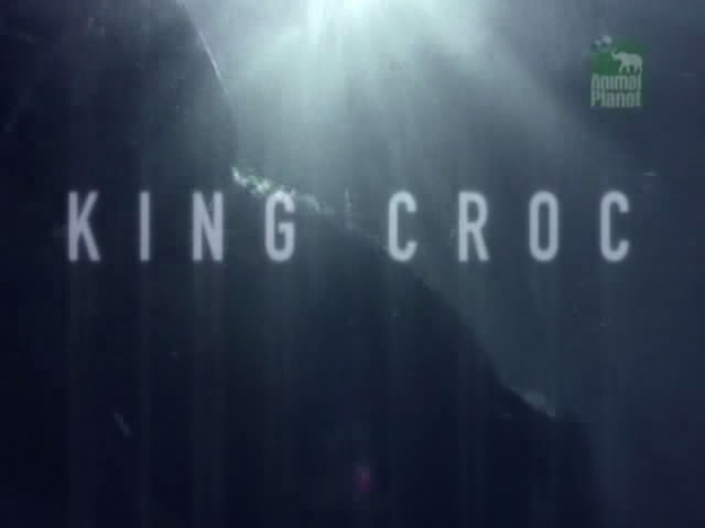 Image: King-Croc-Cover.jpg
