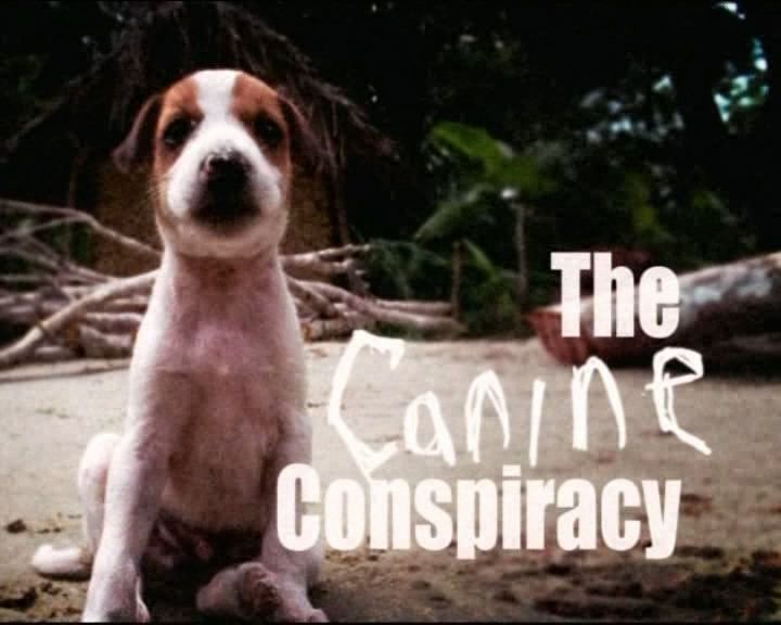 Image: The-Canine-Conspiracy-Cover.jpg