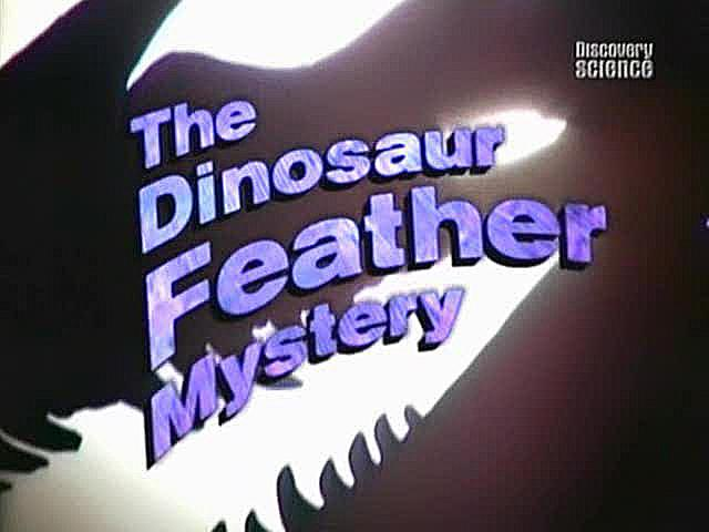 Image:Dinosaur_Feather_Mystery_Cover.jpg