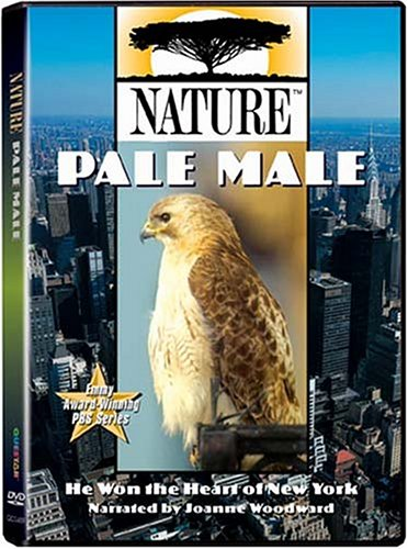 Image: Pale-Male-Cover.jpg