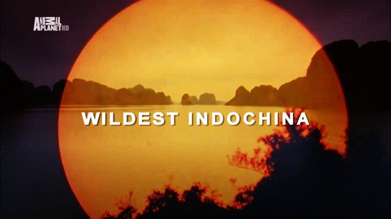 Image: Wildest-Indochina-Cover.jpg