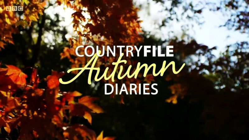 Image: Countryfile-Autumn-Diaries-Cover.jpg