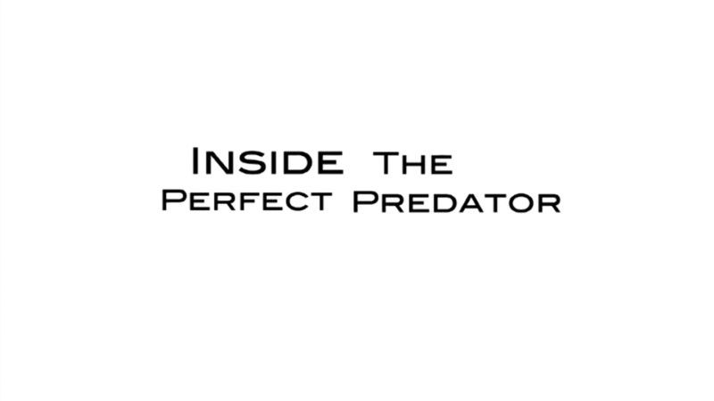 Image: Inside-the-Perfect-Predator-BBC-Cover.jpg