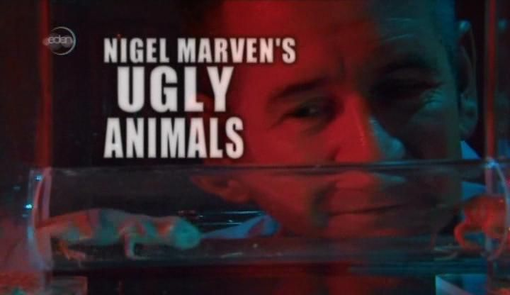 Image: Ugly-Animals-Cover.jpg