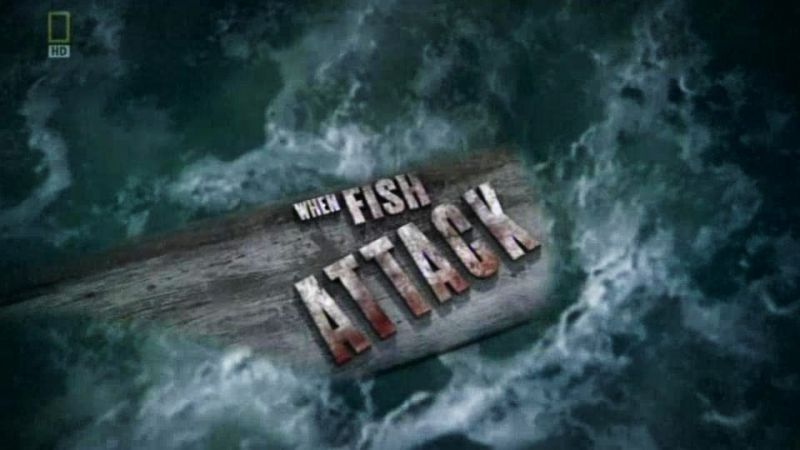 Image: When-Fish-Attack-Cover.jpg
