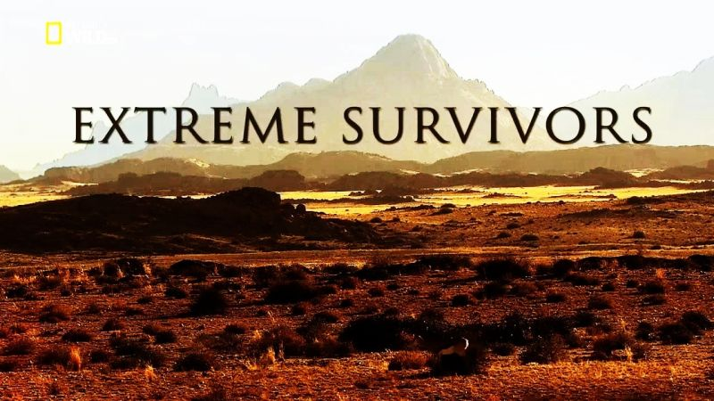Image: Extreme-Survivors-Cover.jpg