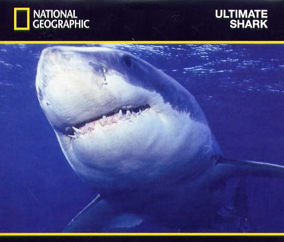 Image: Ultimate-Shark-Cover.jpg