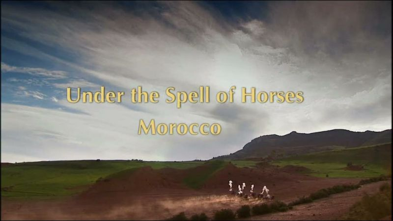Image:Under-the-Spell-of-Horses-chaptershot0.jpg