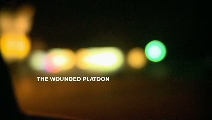 Image: The-Wounded-Platoon-Cover.jpg