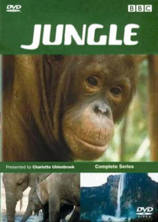 Image: Jungle-Cover.jpg