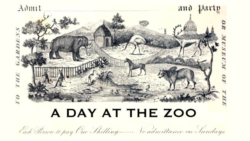 Image: A-Day-at-the-Zoo-Cover.jpg