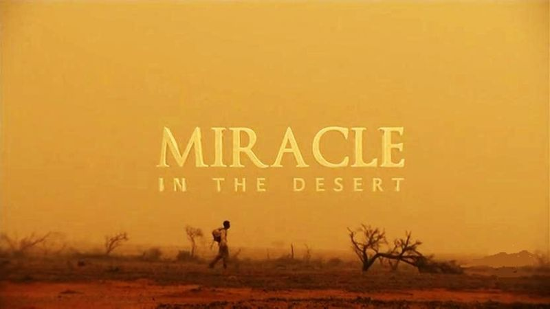 Image: Miracle-In-The-Desert-Cover.jpg
