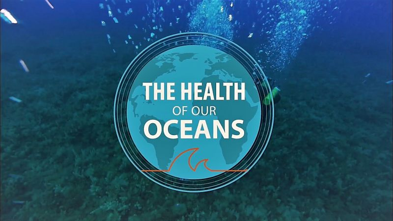 Image: The-Health-of-Our-Oceans-Cover.jpg