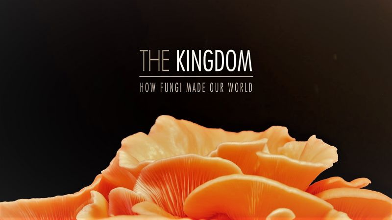 Image: The-Kingdom-How-Fungi-Made-Our-World-Cover.jpg
