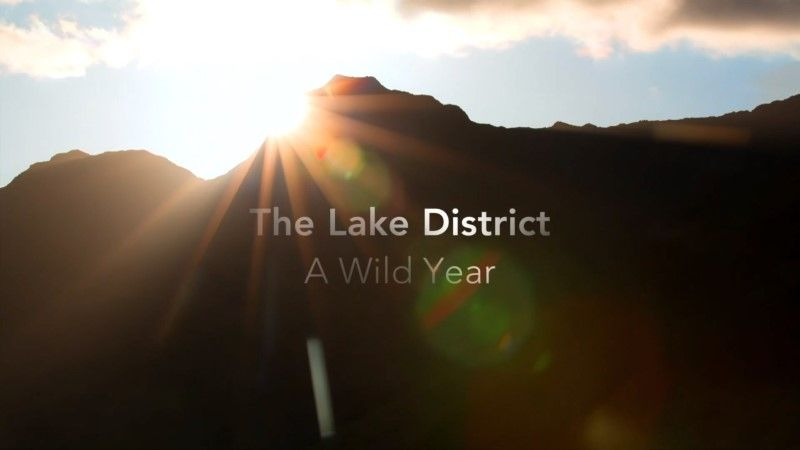 Image: The-Lake-District-A-Wild-Year-Cover.jpg
