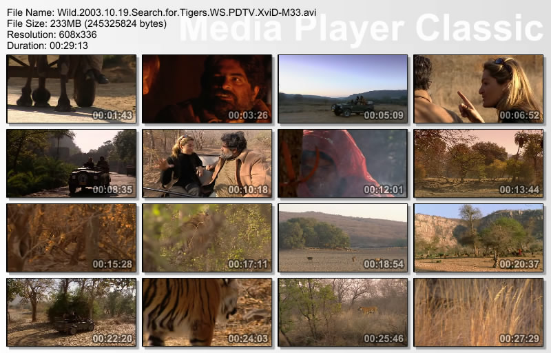 Image: Search-for-Tigers-Screen0.jpg