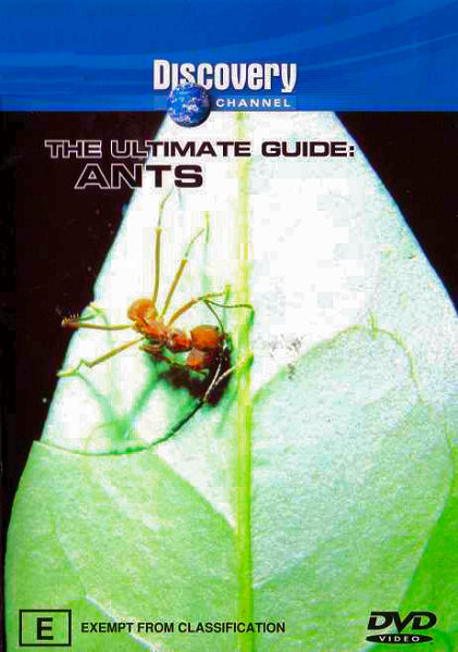Image: Ants-Cover.jpg