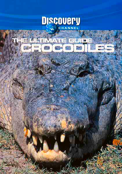 Image: Crocodiles-Cover.jpg
