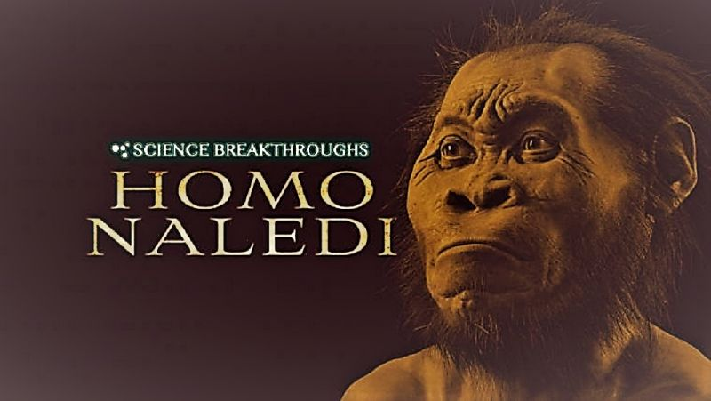 Image: Science-Breakthroughs-Homo-Naledi-Cover.jpg