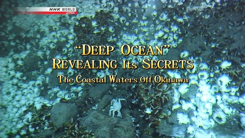 Image: Deep-Ocean-Revealing-its-Secrets-Cover.jpg