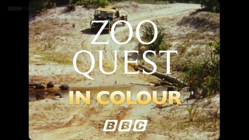 Image: Zoo-Quest-in-Colour-Cover.jpg