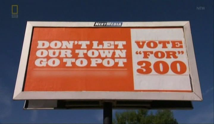 Image:Buds-on-the-Ballot-Screen8.jpg