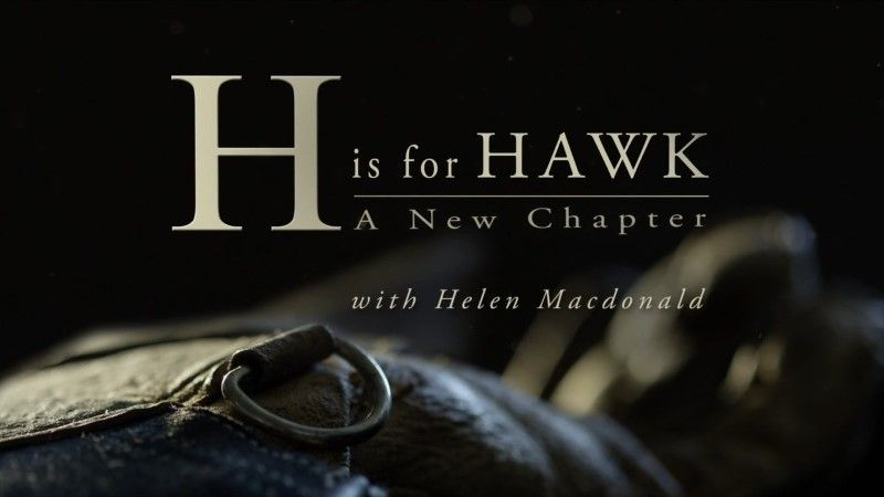 Image: H-is-for-Hawk-A-New-Chapter-Cover.jpg