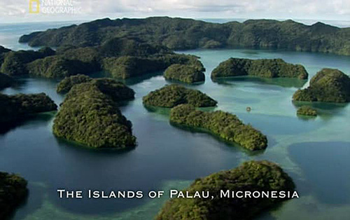 Image:Lost-Tribe-of-Palau-Screen0.jpg