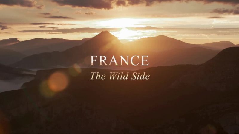 Image: France-The-Wild-Side-Cover.jpg