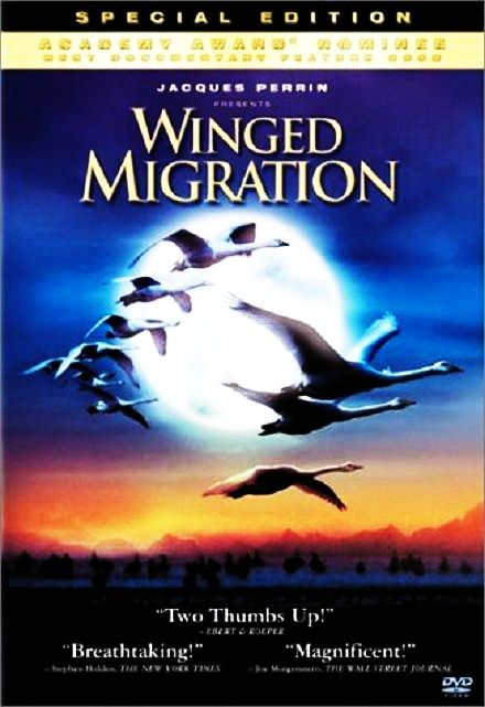 Image: Winged-Migration-Cover.jpg