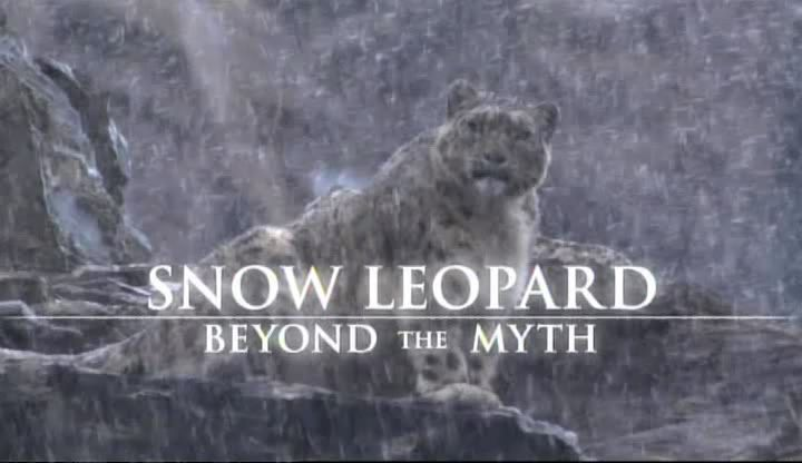 Image: Snow-Leopard-Beyond-the-Myth-Cover.jpg