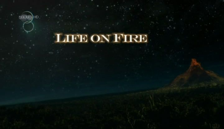 Image: Life-on-Fire-Cover.jpg