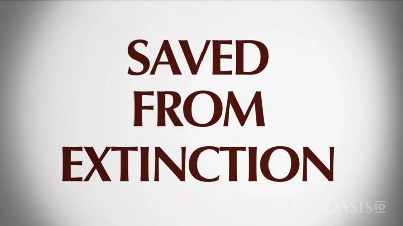 Image: Saved-from-Extinction-Cover.jpg