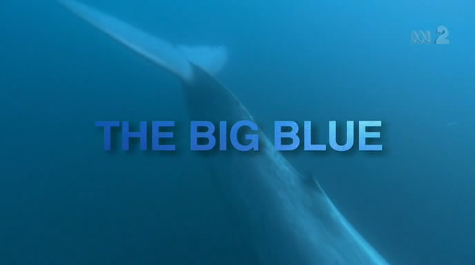 Image: The-Big-Blue-Cover.jpg